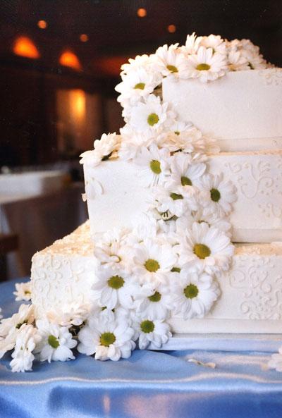 kd-cake.jpg