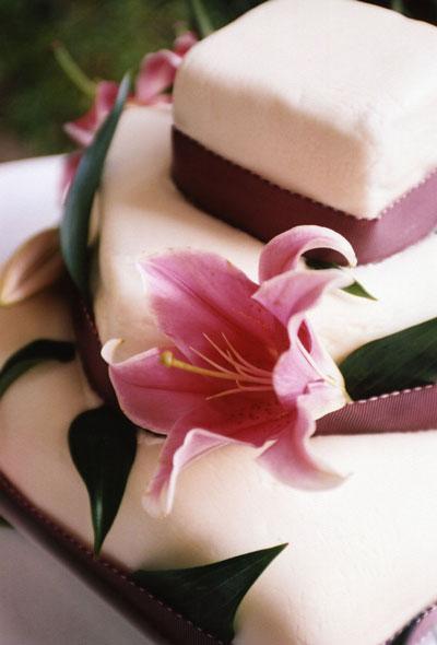 ns-cake.jpg