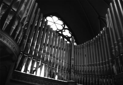 organ-pipes.jpg