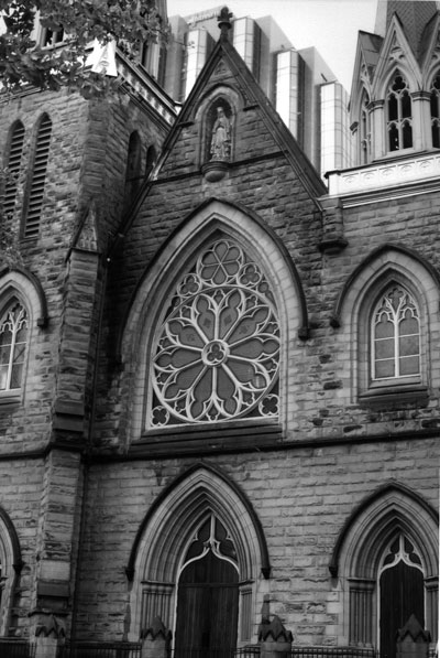 rose-window.jpg
