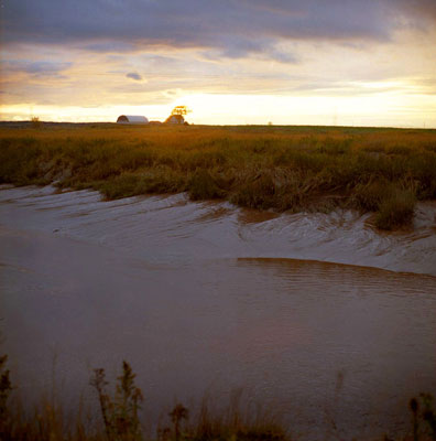 sunset-on-fundy-mud.jpg