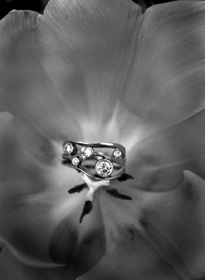 B&W-Ring-